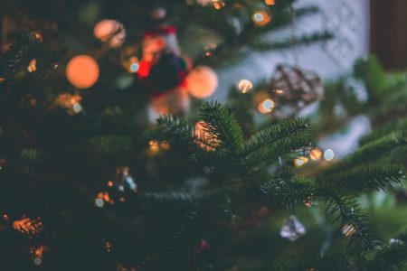 Christmas Tree & Christmas Time - Brewcover Insurance