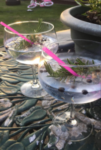 Here are some London Dry Gin cocktails with Indian Tonic Water.