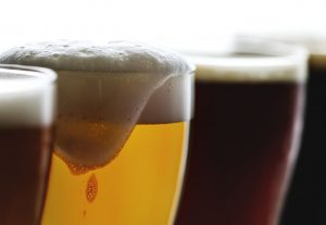 Brewery Insurance UK from Brewcover. Mile Tree Brewery Spotlight of the Month interview.